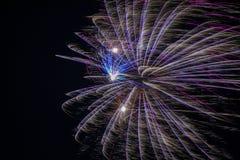 Fuochi d'artificio blu e porpora immagine stock libera da diritti