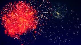 Fuochi d'artificio blu nel cielo illustrazione di stock
