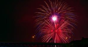Fuochi d'artificio blu rosa dell'oro Immagine Stock