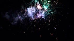 Fuochi d'artificio che esplodono in vari colori nel cielo notturno scuro archivi video