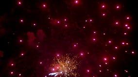 Fuochi d'artificio che infiammano nel cielo notturno Movimento lento stock footage