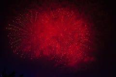 Fuochi d'artificio in cielo di buio di notte Immagine Stock