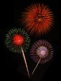 Fuochi d'artificio contro il cielo nero fotografia stock