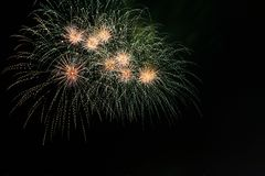 Fuochi d'artificio del discolo di mare Immagini Stock