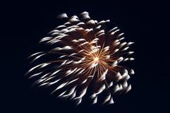 Fuochi d'artificio di celebrazione Immagini Stock