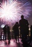Fuochi d'artificio di sorveglianza della gente Immagini Stock