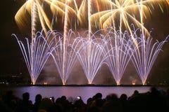 Fuochi d'artificio di sorveglianza della gente Fotografie Stock