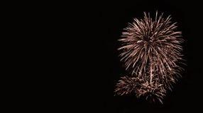 Fuochi d'artificio dorati nel cielo notturno Fotografie Stock
