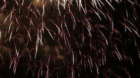 Fuochi d'artificio festivi video d archivio