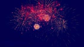 Fuochi d'artificio festivi nel cielo notturno archivi video