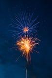 Fuochi d'artificio - fiore Fotografie Stock