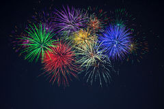 Fuochi d'artificio gialli blu rossi verdi porpora di celebrazione Fotografia Stock