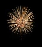 Fuochi d'artificio gialli su fondo nero Fotografia Stock