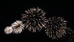 Fuochi d'artificio III Fotografia Stock