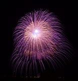 Fuochi d'artificio isolati nella fine scura del fondo su con il posto per testo, festival dei fuochi d'artificio di Malta, 4 di l Fotografia Stock Libera da Diritti