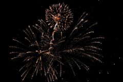 Fuochi d'artificio luminosi dell'oro immagine stock libera da diritti