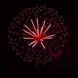 Fuochi d'artificio multicolori luminosi che esplodono nel cielo Immagine Stock