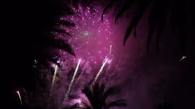 Fuochi d'artificio multipli firework Notte variopinta di festa del atn dei fuochi d'artificio archivi video