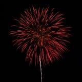 Fuochi d'artificio nei precedenti del cielo notturno Fotografia Stock