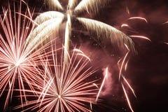 Fuochi d'artificio nel cielo notturno Immagine Stock Libera da Diritti