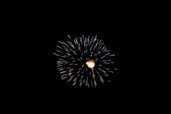 Fuochi d'artificio nel cielo notturno Immagini Stock Libere da Diritti