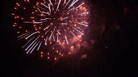 Fuochi d'artificio nel cielo notturno archivi video