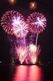 Fuochi d'artificio piacevolmente sporgenti Fotografia Stock