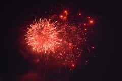 Fuochi d'artificio rossi alla notte nera Fotografia Stock Libera da Diritti