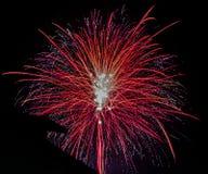 Fuochi d'artificio rossi con fondo nero immagine stock libera da diritti