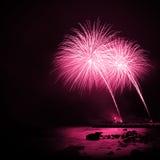 Fuochi d'artificio rosso magenta Immagini Stock Libere da Diritti