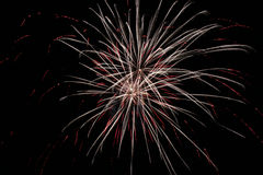 Fuochi d'artificio semplici Fotografie Stock