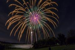 Fuochi d'artificio sopra la linea di albero Immagine Stock Libera da Diritti
