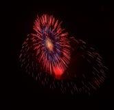 Fuochi d'artificio stupefacenti rossi isolati nella fine scura del fondo su con il posto per testo, Malta Fotografia Stock Libera da Diritti