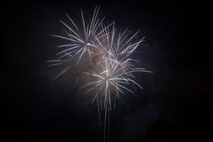 Fuochi d'artificio su un cielo nero Fotografia Stock Libera da Diritti