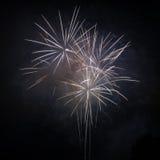 Fuochi d'artificio su un cielo nero Immagine Stock