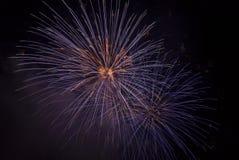 Fuochi d'artificio su un cielo nero Fotografia Stock