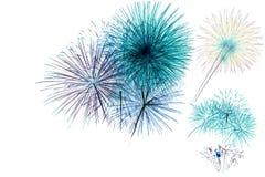 Fuochi d'artificio su un fondo bianco Fotografie Stock Libere da Diritti