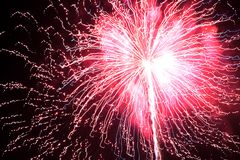 Fuochi d'artificio su un fondo nero Immagine Stock Libera da Diritti