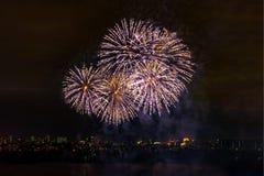 Fuochi d'artificio sul fondo scuro del cielo Fotografie Stock