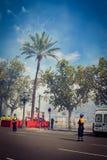 Fuochi d'artificio tradizionali di giorno di Valencia Fotografia Stock