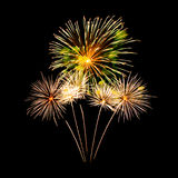 Fuochi d'artificio variopinti Fotografie Stock