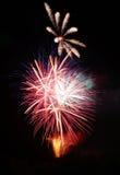 Fuochi d'artificio variopinti Immagine Stock