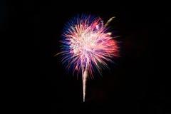 Fuochi d'artificio variopinti Fotografie Stock Libere da Diritti