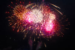 Fuochi d'artificio variopinti Fotografia Stock Libera da Diritti