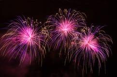 Fuochi d'artificio variopinti 2017 Fotografia Stock