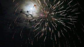 Fuochi d'artificio variopinti ad un cielo nero video d archivio