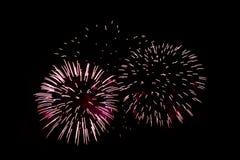Fuochi d'artificio variopinti di celebrazione Fotografia Stock