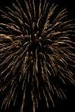 Fuochi d'artificio variopinti nella notte Fotografia Stock Libera da Diritti