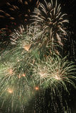 Fuochi d'artificio verdi & bianchi Fotografia Stock Libera da Diritti