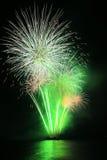 Fuochi d'artificio verdi del dente di leone Fotografie Stock